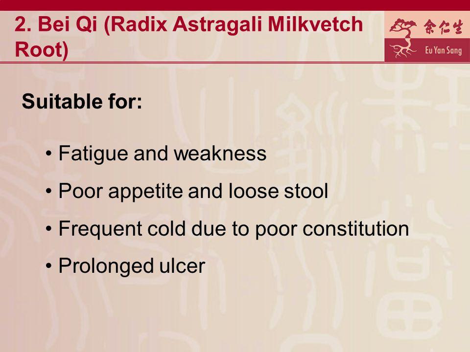 2. Bei Qi (Radix Astragali Milkvetch Root)