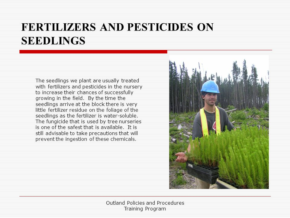 FERTILIZERS AND PESTICIDES ON SEEDLINGS