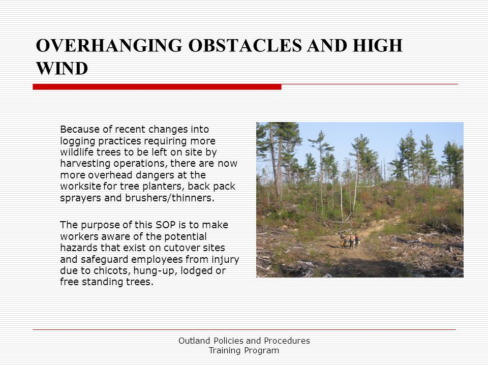 OVERHANGING OBSTACLES AND HIGH WIND
