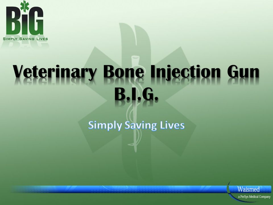 Veterinary Bone Injection Gun B.I.G.