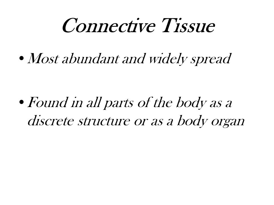 Connective Tissue Most abundant and widely spread