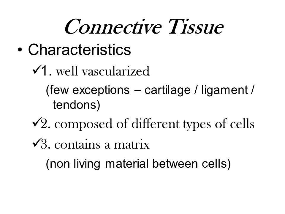 Connective Tissue Characteristics 1. well vascularized