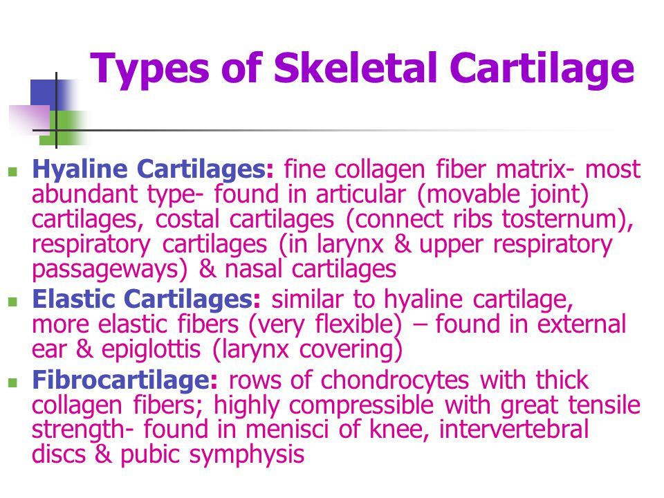 Types of Skeletal Cartilage