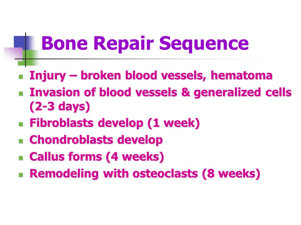 Bone Repair Sequence Injury – broken blood vessels, hematoma