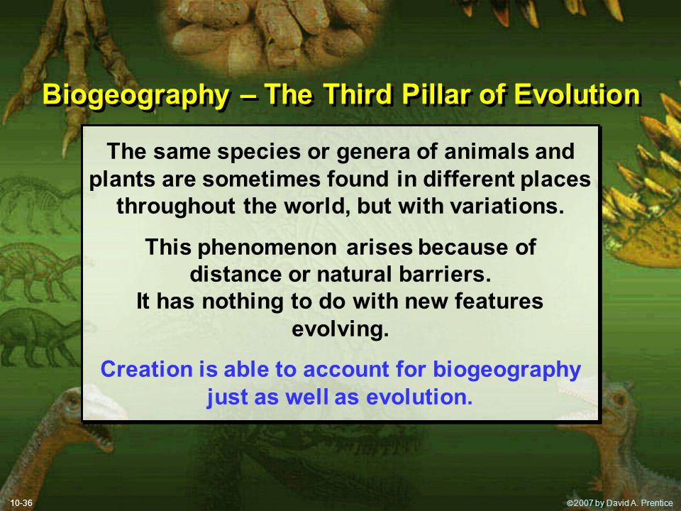 Biogeography – The Third Pillar of Evolution