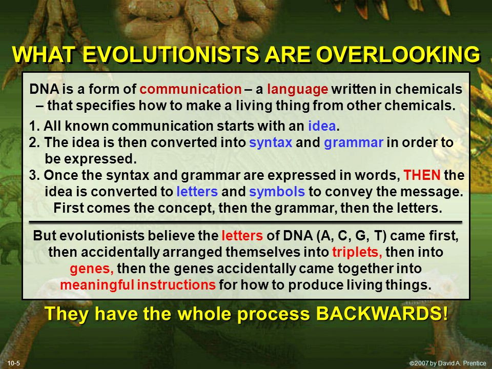 WHAT EVOLUTIONISTS ARE OVERLOOKING