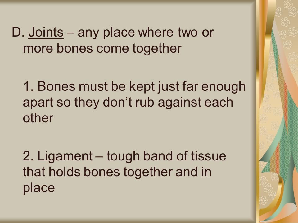 D. Joints – any place where two or more bones come together