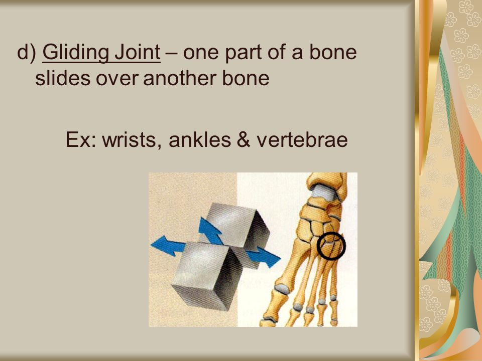 d) Gliding Joint – one part of a bone slides over another bone