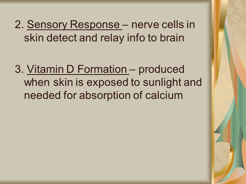 2. Sensory Response – nerve cells in skin detect and relay info to brain 3.