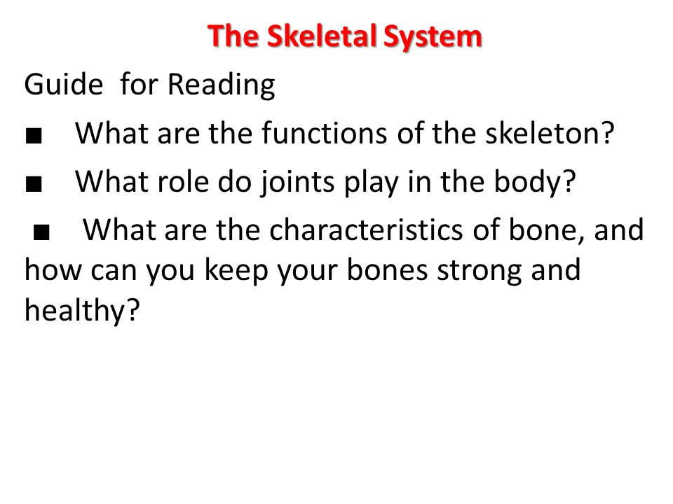 The Skeletal System Guide for Reading ■ What are the functions of the skeleton.