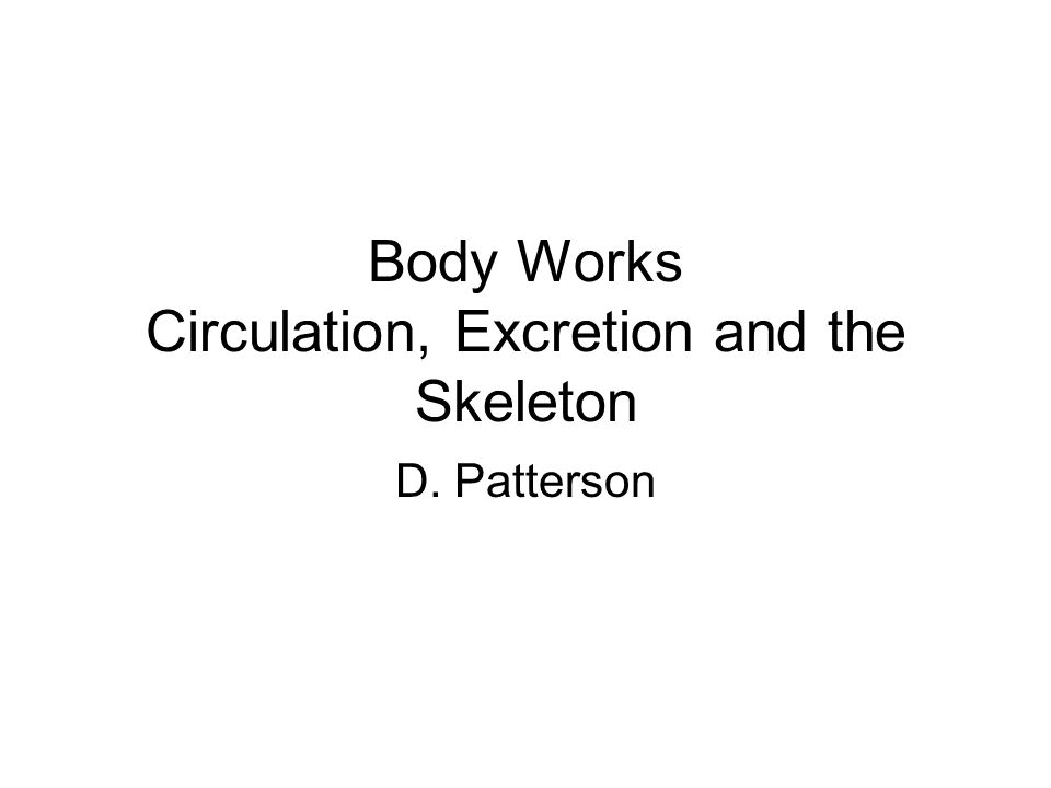 Body Works Circulation, Excretion and the Skeleton