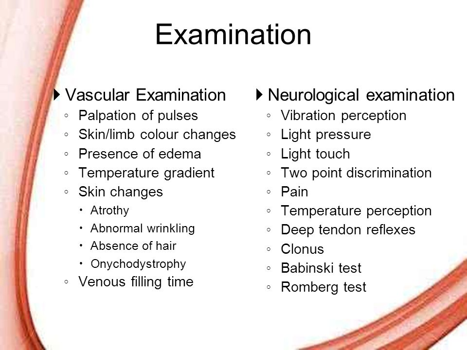 Examination Vascular Examination Neurological examination