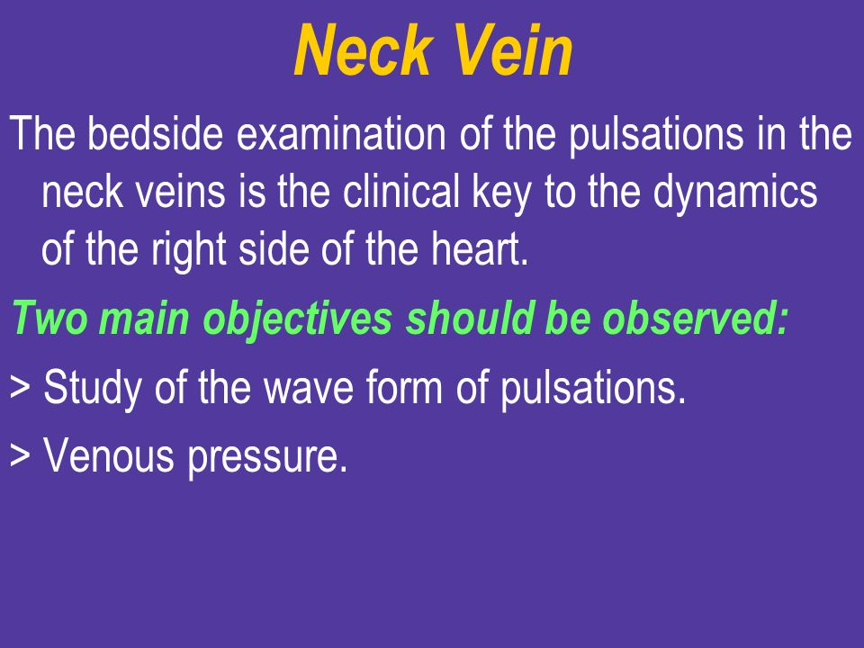Neck Vein The bedside examination of the pulsations in the neck veins is the clinical key to the dynamics of the right side of the heart.