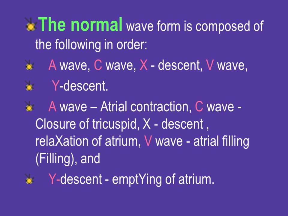 The normal wave form is composed of the following in order: