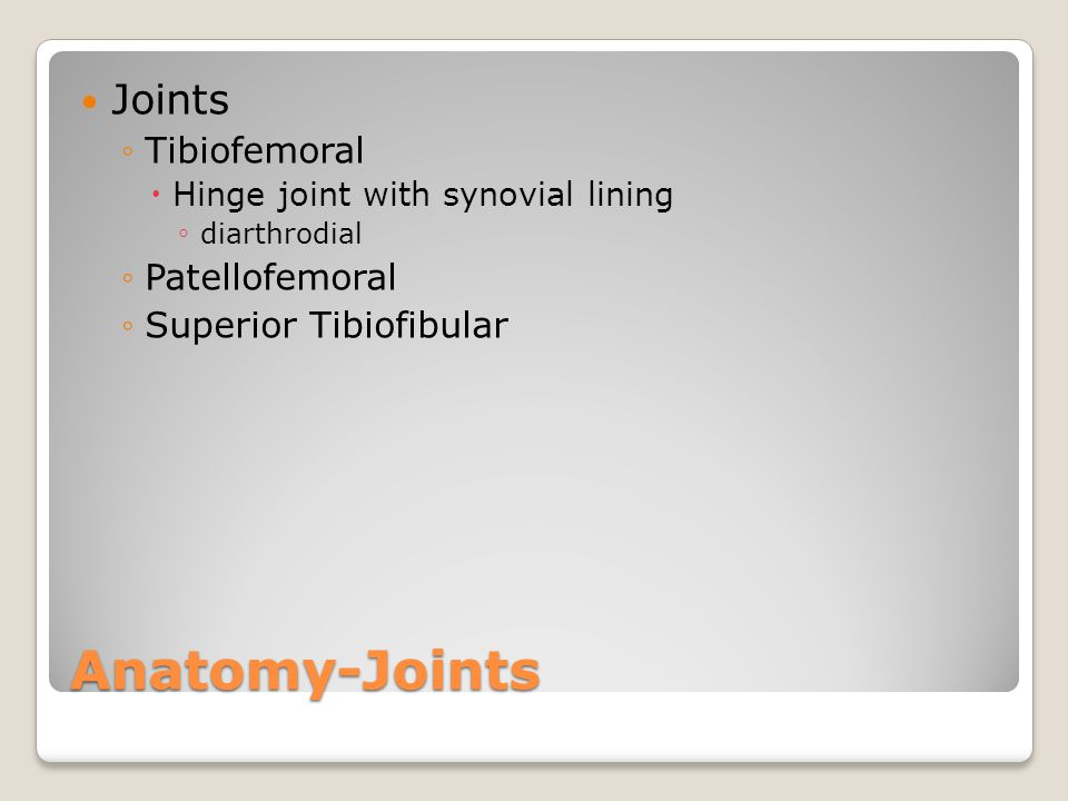 Anatomy-Joints Joints Tibiofemoral Patellofemoral