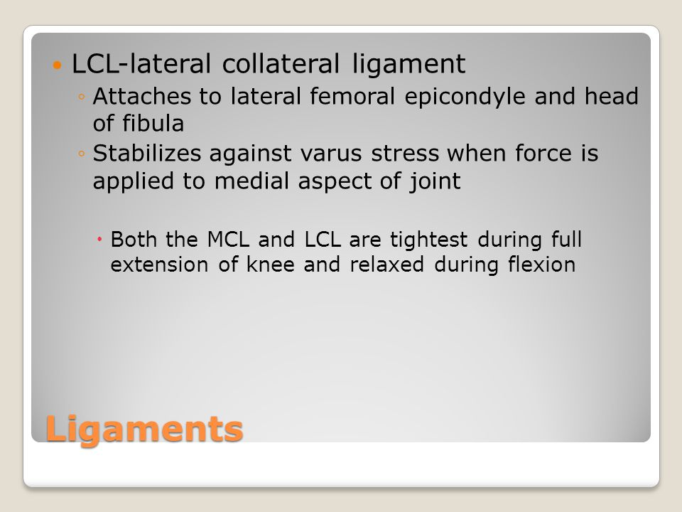 Ligaments LCL-lateral collateral ligament