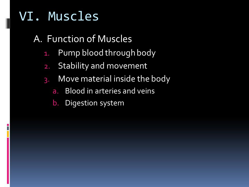 VI. Muscles A. Function of Muscles Pump blood through body
