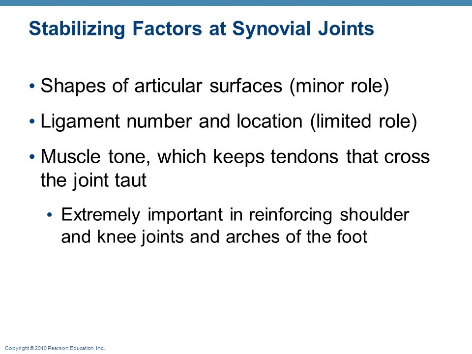 Stabilizing Factors at Synovial Joints
