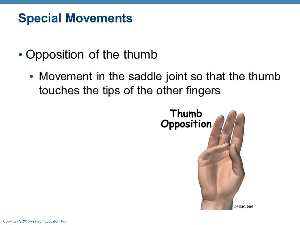 Opposition of the thumb