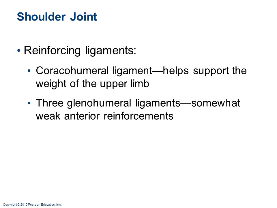 Reinforcing ligaments: