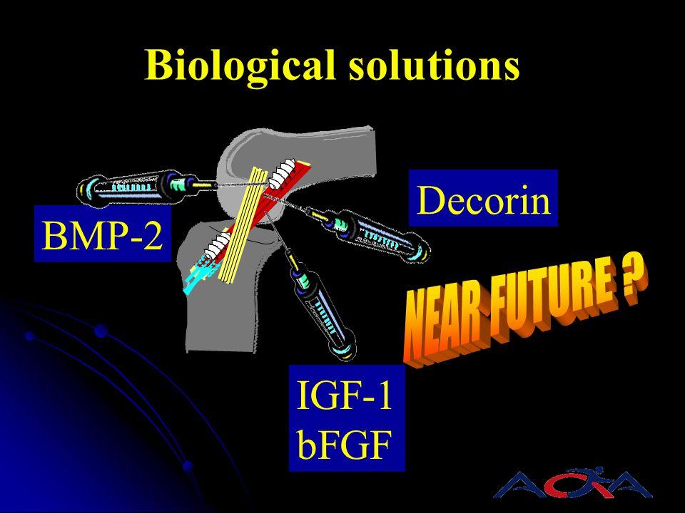 Biological solutions Decorin BMP-2 IGF-1 bFGF NEAR FUTURE