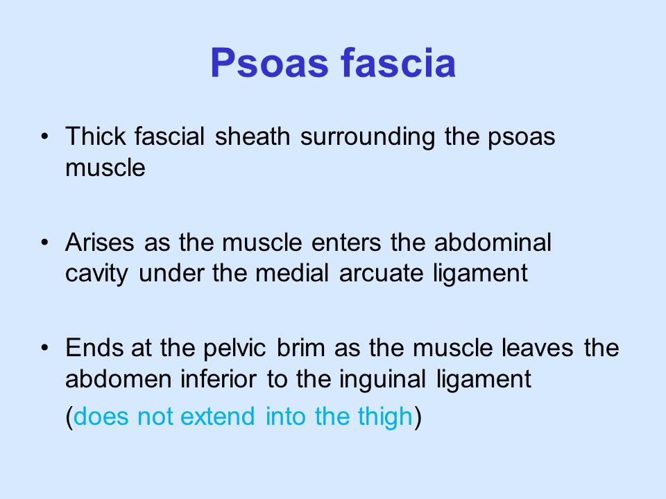 Psoas fascia Thick fascial sheath surrounding the psoas muscle