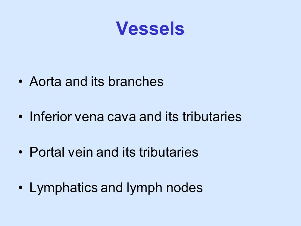 Vessels Aorta and its branches Inferior vena cava and its tributaries