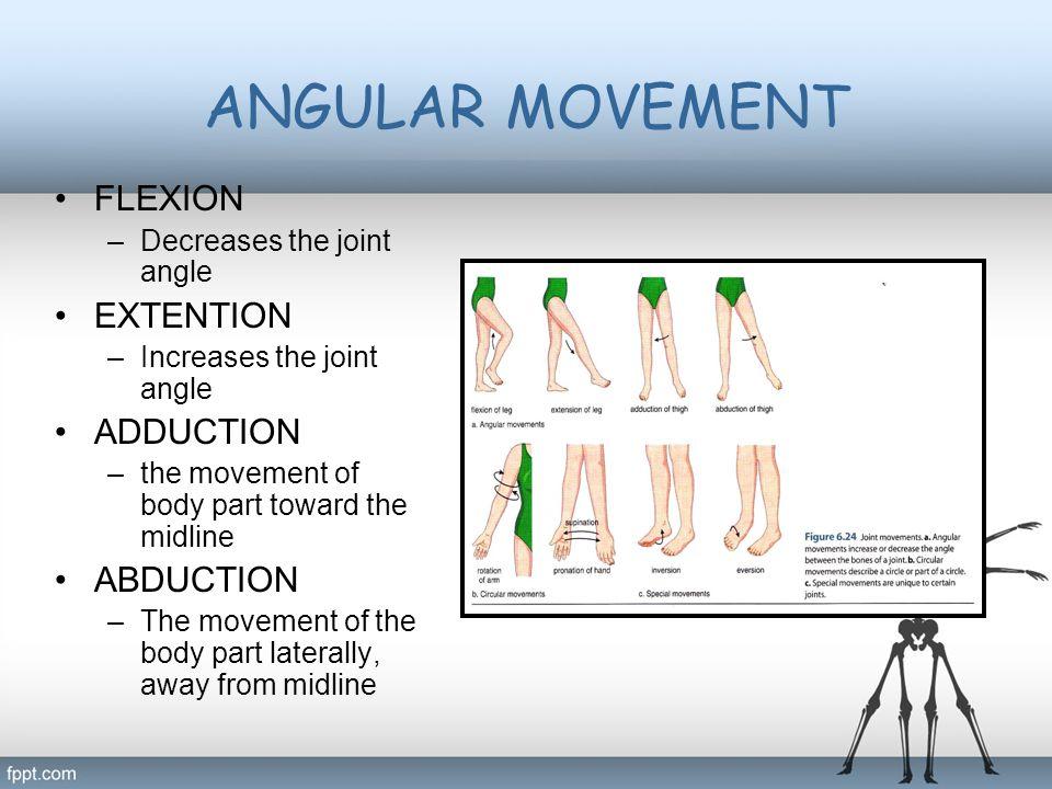 ANGULAR MOVEMENT FLEXION EXTENTION ADDUCTION ABDUCTION