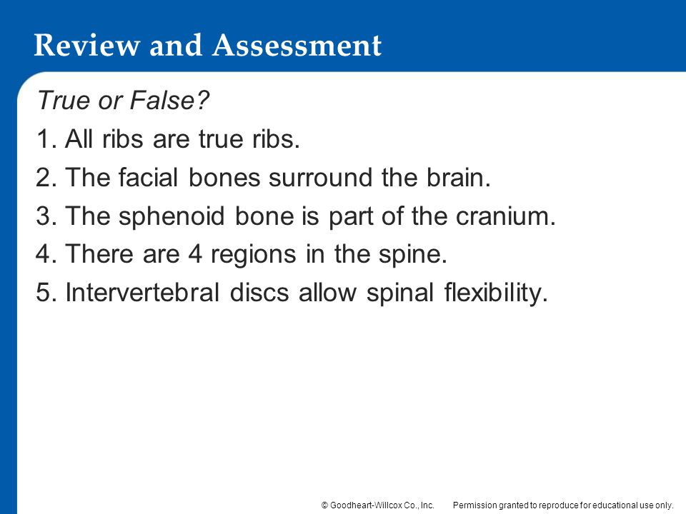 Review and Assessment True or False 1. All ribs are true ribs.