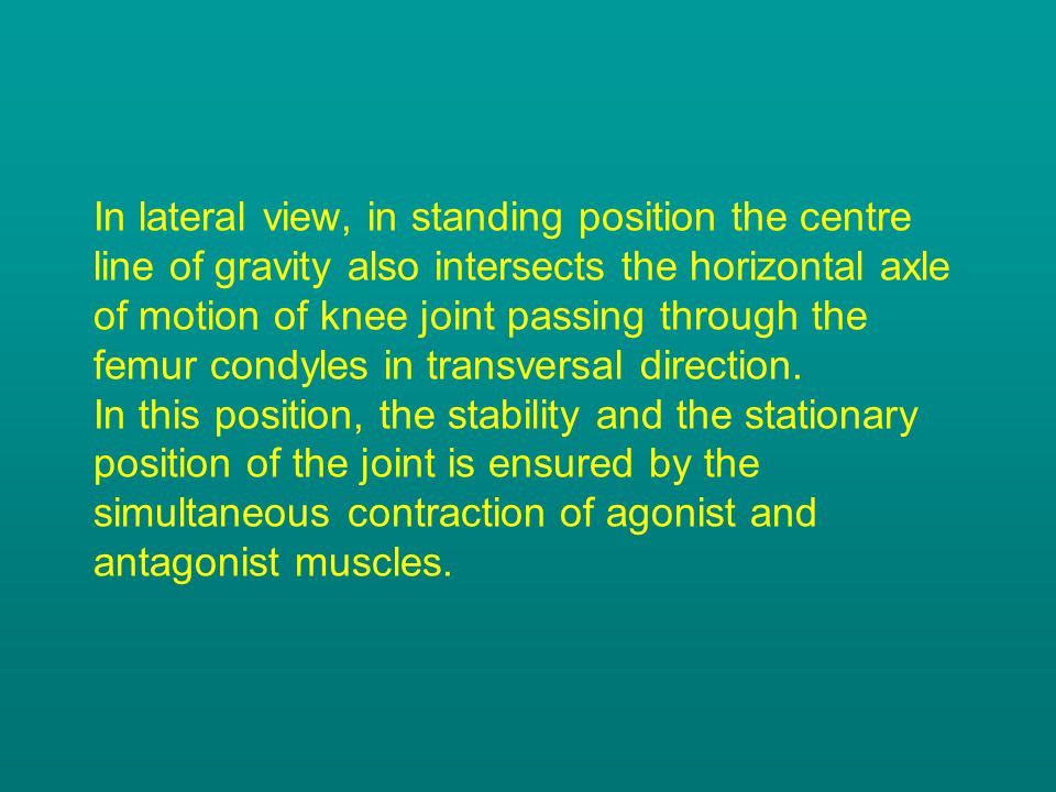 In lateral view, in standing position the centre line of gravity also intersects the horizontal axle of motion of knee joint passing through the femur condyles in transversal direction.