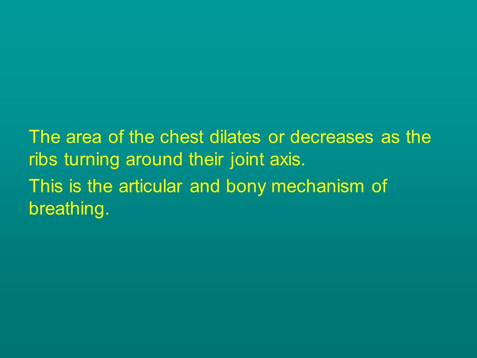 The area of the chest dilates or decreases as the ribs turning around their joint axis.