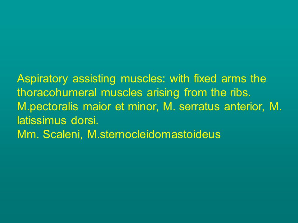 Aspiratory assisting muscles: with fixed arms the thoracohumeral muscles arising from the ribs.