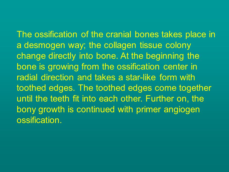 The ossification of the cranial bones takes place in a desmogen way; the collagen tissue colony change directly into bone.