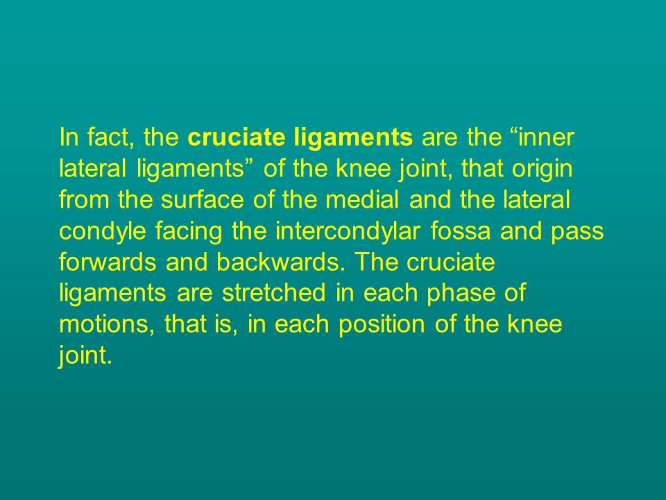 In fact, the cruciate ligaments are the inner lateral ligaments of the knee joint, that origin from the surface of the medial and the lateral condyle facing the intercondylar fossa and pass forwards and backwards.