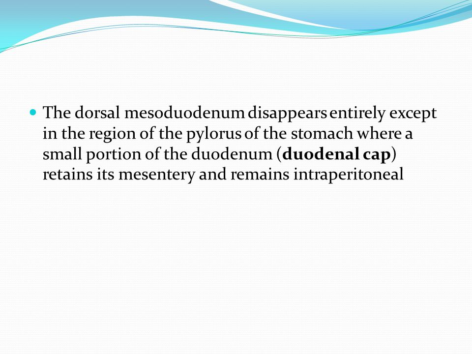 The dorsal mesoduodenum disappears entirely except in the region of the pylorus of the stomach where a small portion of the duodenum (duodenal cap) retains its mesentery and remains intraperitoneal