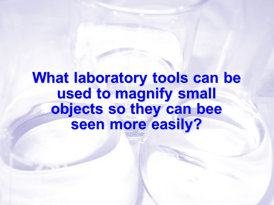 What laboratory tools can be used to magnify small objects so they can bee seen more easily