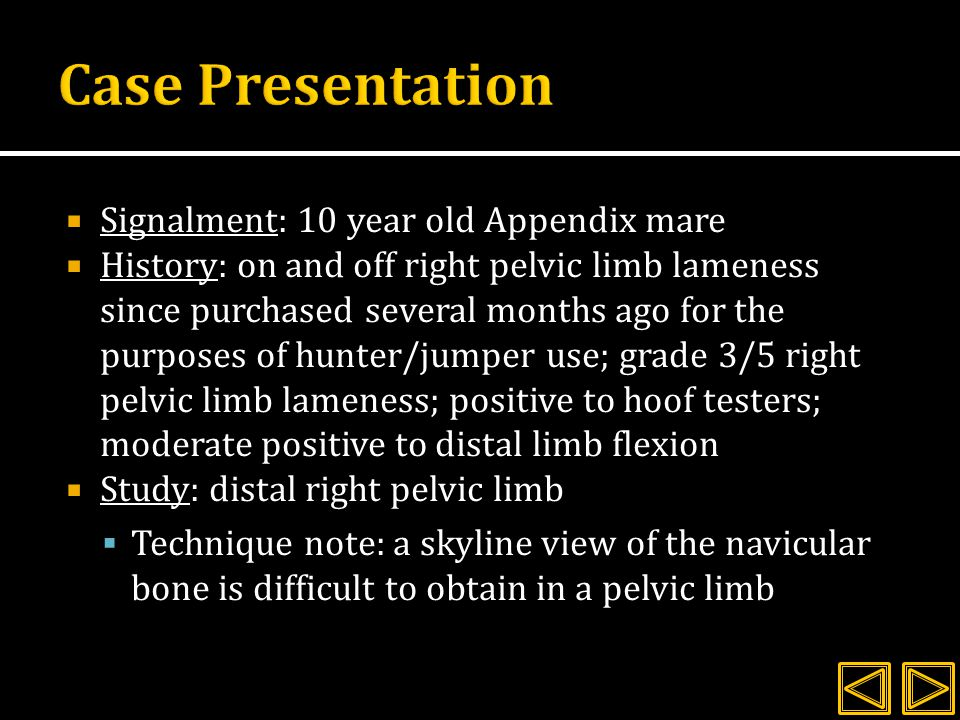 Case Presentation Signalment: 10 year old Appendix mare