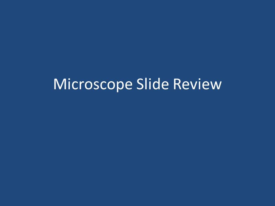 Microscope Slide Review