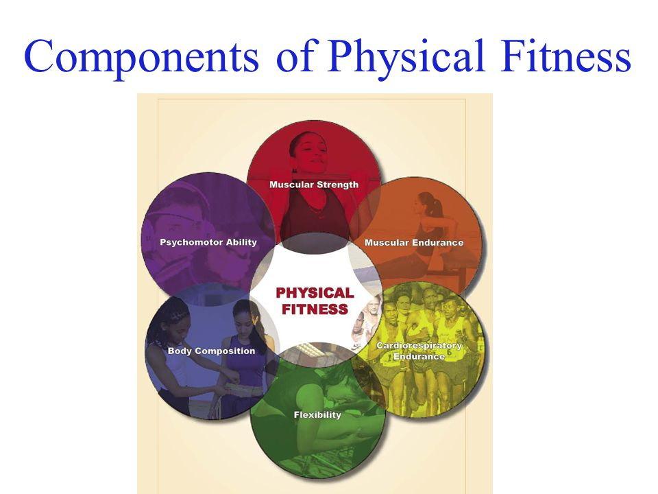 "11 components of physical fitness 11 components of physical fitness one leg deadlift to improve balance and strength bring it home personal training is the winner of the 2014 wdiv channel 4 ""vote 4 the."