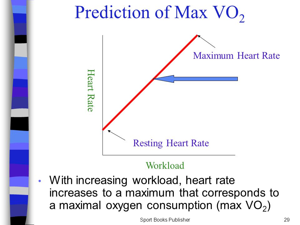 Prediction of Max VO2 Maximum Heart Rate. Heart Rate. Resting Heart Rate. Workload.