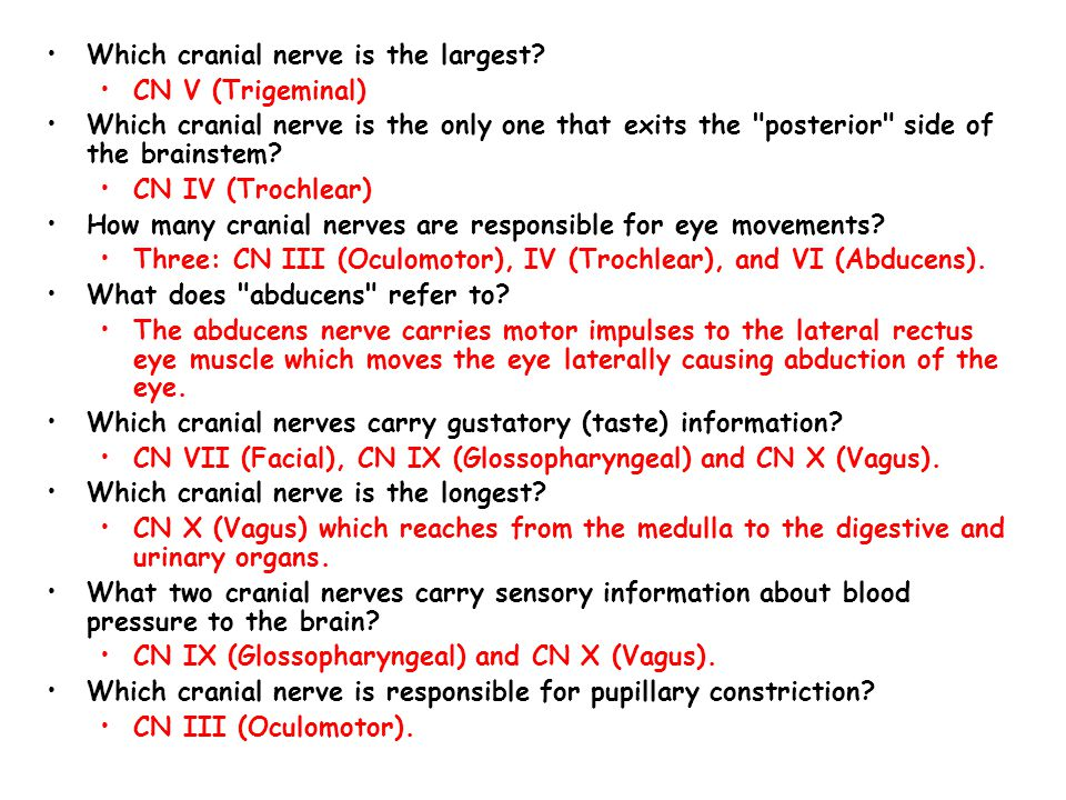 Which cranial nerve is the largest