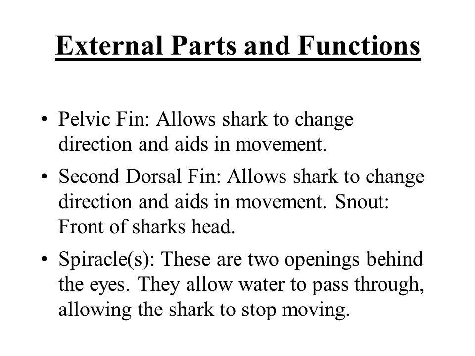 External Parts and Functions