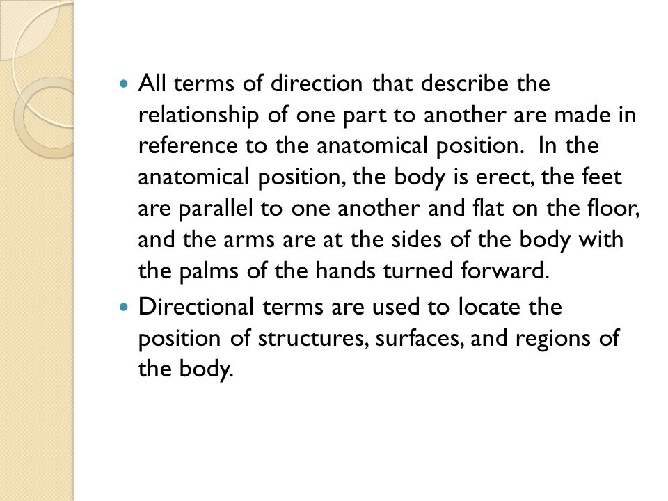 All terms of direction that describe the relationship of one part to another are made in reference to the anatomical position. In the anatomical position, the body is erect, the feet are parallel to one another and flat on the floor, and the arms are at the sides of the body with the palms of the hands turned forward.