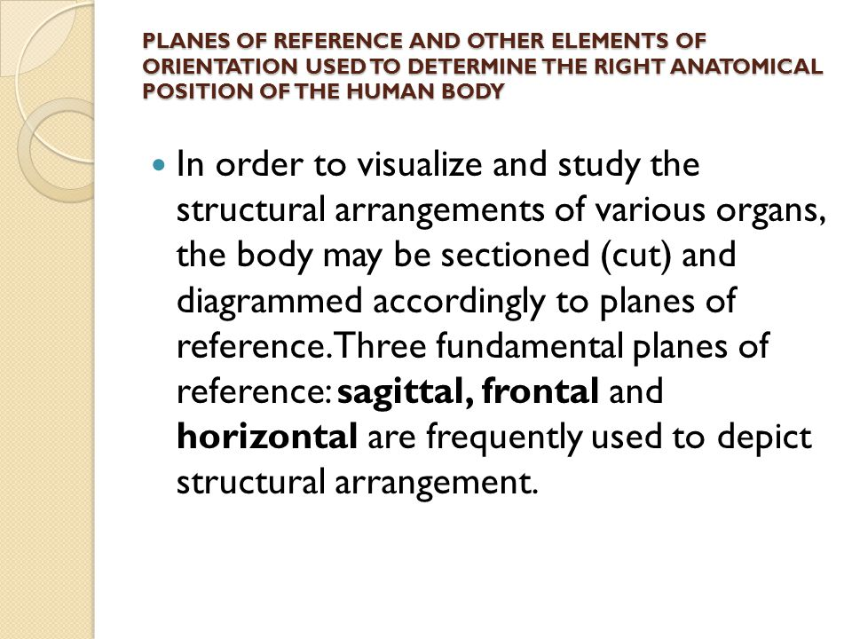 PLANES OF REFERENCE AND OTHER ELEMENTS OF ORIENTATION USED TO DETERMINE THE RIGHT ANATOMICAL POSITION OF THE HUMAN BODY