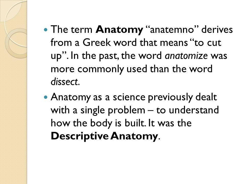 The term Anatomy anatemno derives from a Greek word that means to cut up . In the past, the word anatomize was more commonly used than the word dissect.