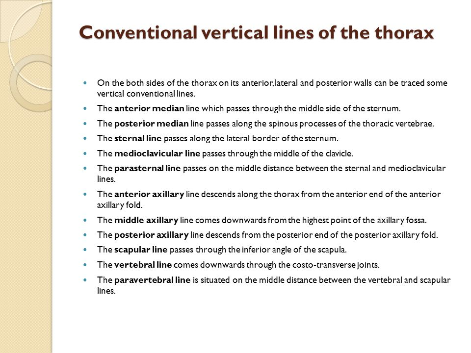Conventional vertical lines of the thorax
