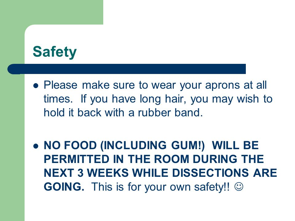Safety Please make sure to wear your aprons at all times. If you have long hair, you may wish to hold it back with a rubber band.