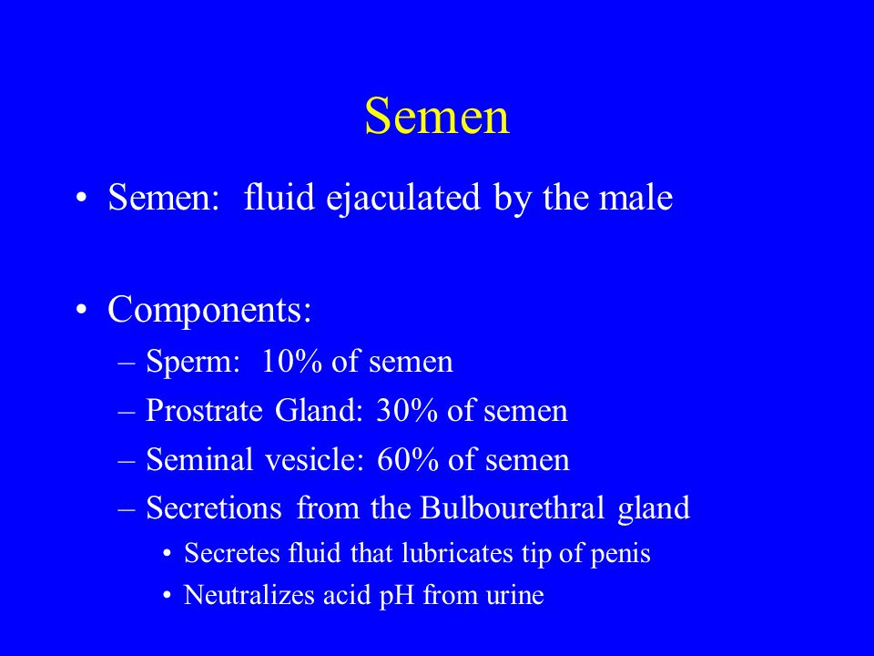 Semen Semen: fluid ejaculated by the male Components: