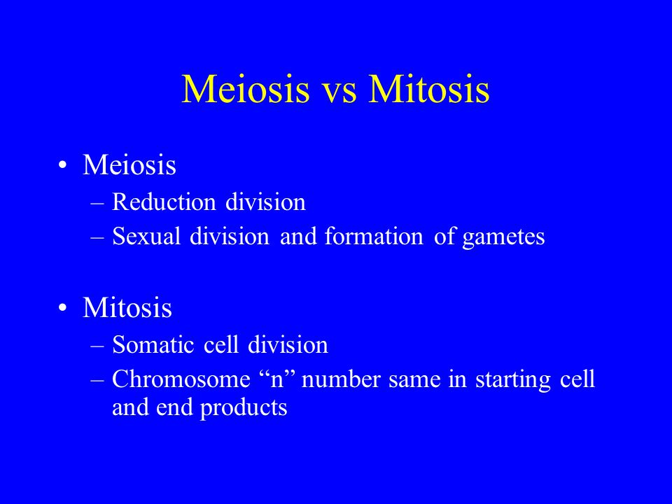 Meiosis vs Mitosis Meiosis Mitosis Reduction division