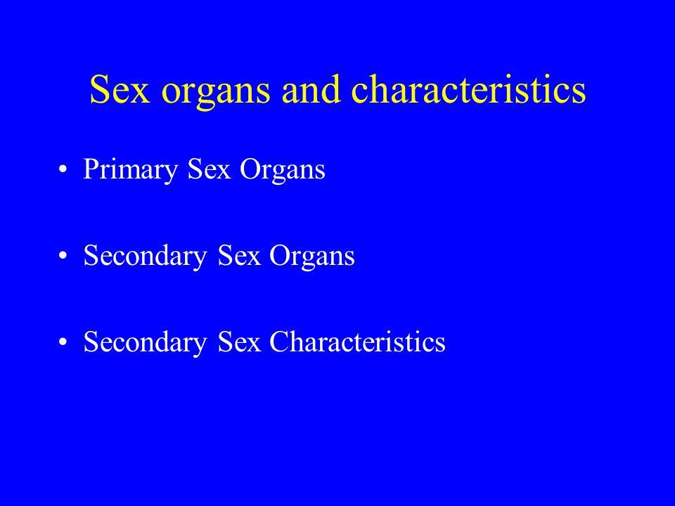 Sex organs and characteristics